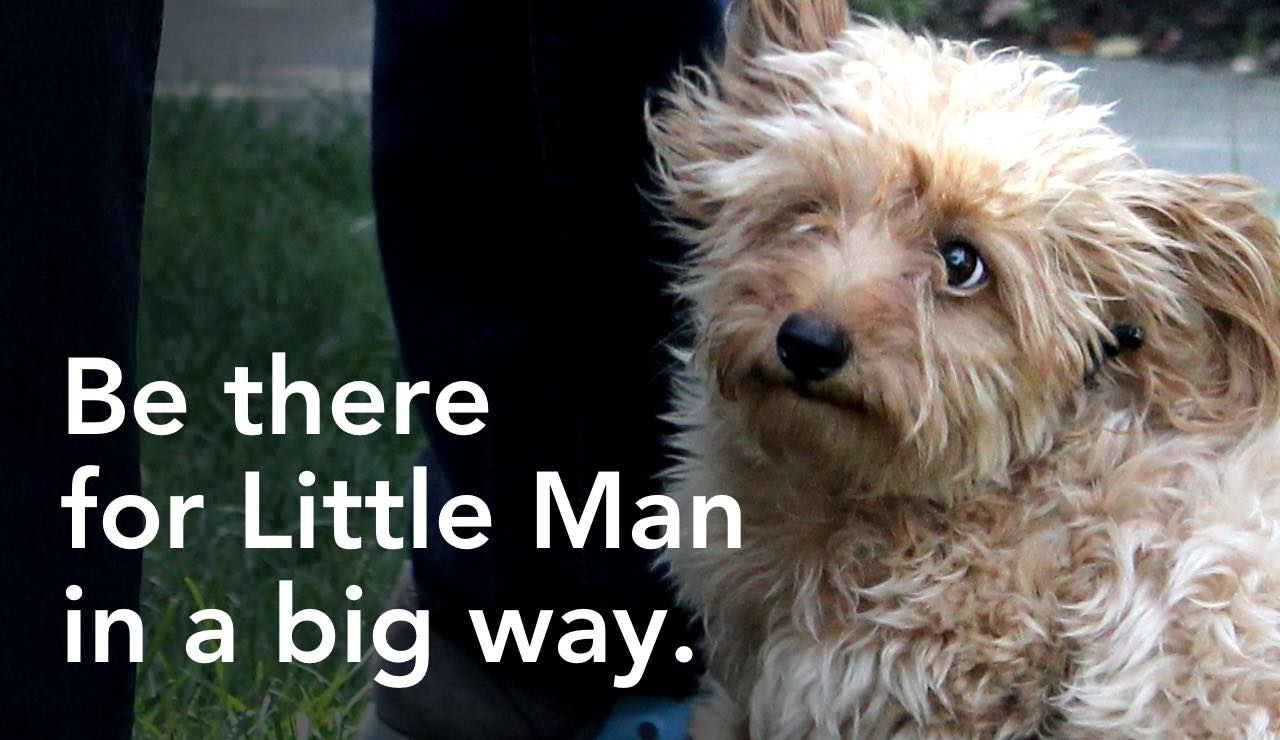 Be there for Little Man in a big way.
