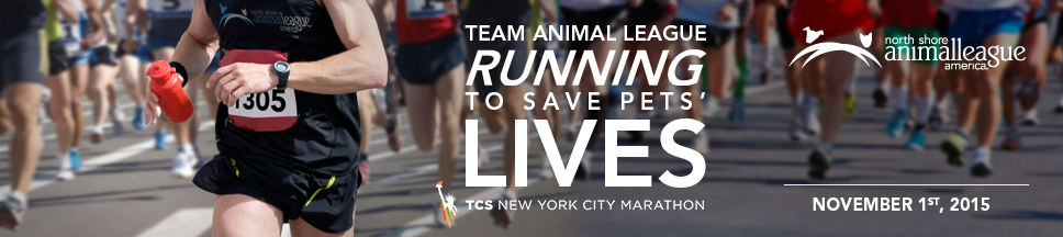 TCS New York City Marathon 2015